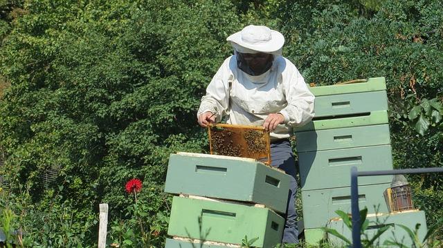 beekeeper-941688_640
